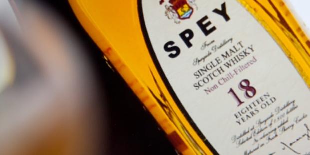 Spey-18yo